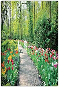 Hitecera Country Decor Wedding Gifts for The Couple,Tulips in Keukenhof Gardens Path Along Colorful Flowers Trees Nature Picture Gifts for Travelers,8''Wx12''H