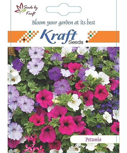 Petunia Multiflora Mix Flower Seeds by Kraft Seeds