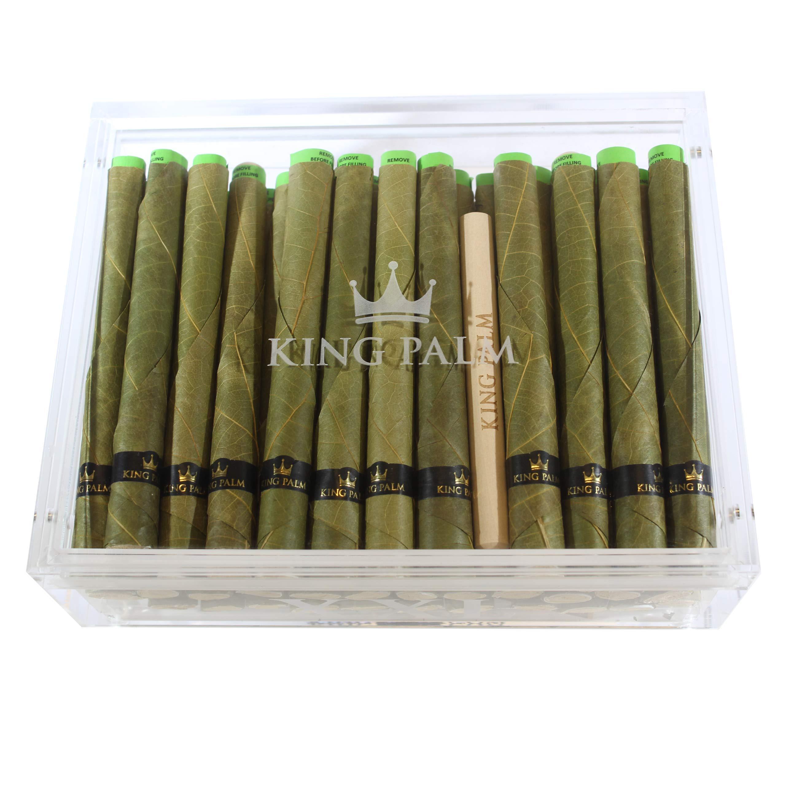 King Palm XXL Humidor Natural Palm Leaves (35 XXL Rolls / 5 Packing Sticks)