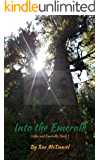 Into the Emerald: Book 1 of the Coffee and Emeralds Series