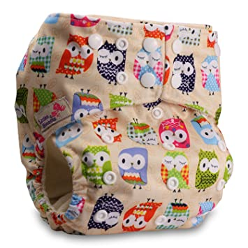 Littles /& Bloomz Baby Cloth Washable Reusable Nappy Pocket Diaper Bamboo Pattern 40 Fastener: Hook-Loop Without Insert