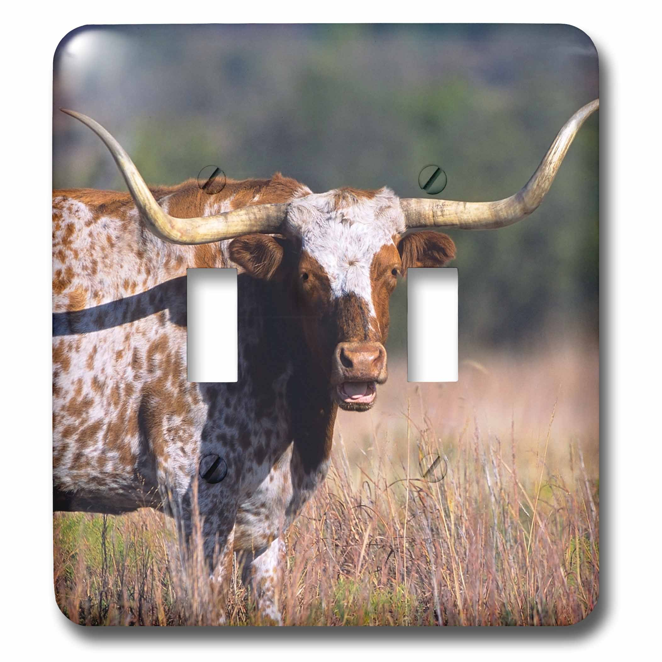 3dRose LSP_260687_2 Texas Longhorn Cattle, Wyoming, USA Toggle Switch, by 3dRose