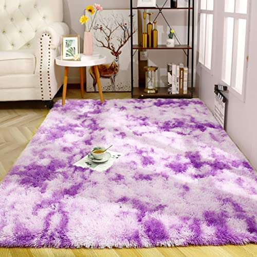 ISEAU Soft Shag Area Rug Modern Indoor Fluffy Rug