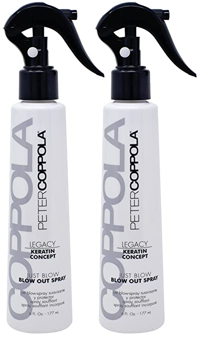 Amazon.com: Peter Coppola Just Blow Blowout Spray - (6 oz (2 Pack)) Reduces Blow Dry Time, Heat Protectant Spray, Anti Frizz, Smoothes and Straightens all ...