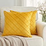 BeBen Pack of 2 Velvet Throw Pillows Sofa Decorative Throw Pillow Covers 18x18 Soft Solid Cushion Case for Bedroom Car Outdoo