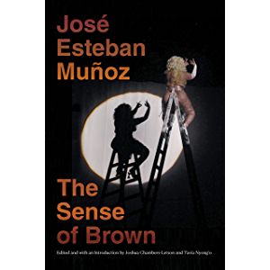 The Sense of Brown (Perverse Modernities: A Series Edited by Jack Halberstam and Lisa Lowe)