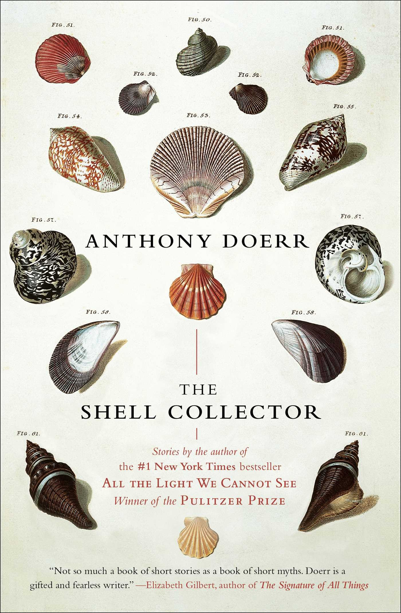 The Shell Collector: Stories: Anthony Doerr: 9781439190050: Amazon:  Books