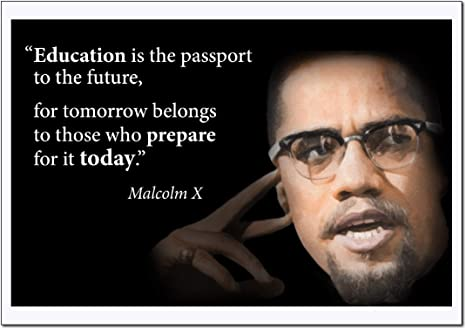 Amazon.com: Motivational Malcolm X Quote Poster Large (Education ...
