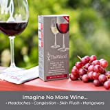 The Wand Wine Filter by PureWine   No More Wine