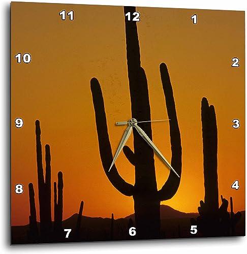 3dRose DPP_87957_2 Giant Saguaro Cactus Succulent, Arizona-Us03 Jme0107-John and Lisa Merrill-Wall Clock, 13 by 13-Inch