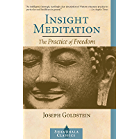 Insight Meditation: A Psychology of Freedom (Shambhala Classics) (English Edition)