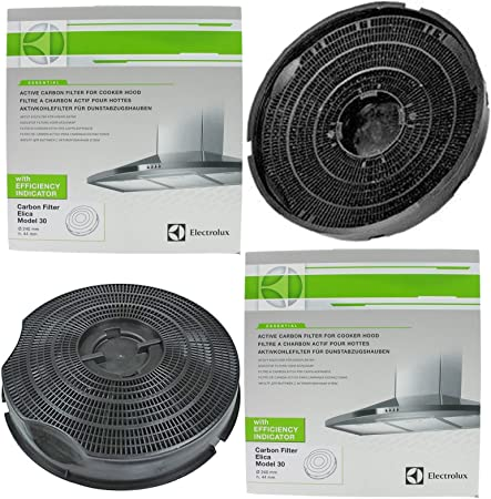 CANDY Auténtica CBP61 cbp62 cbt61 Tipo 30 Carbono Filtro de ventilación de Campana extractora de carbón (Pack de 2 filtros, 240 mm x 46 mm): Amazon.es: Hogar