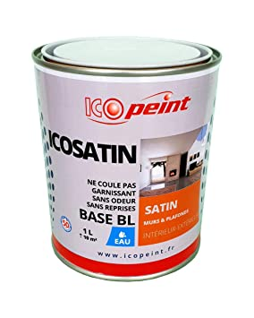 Peinture Acrylique Satin Lessivable 1l Icosatin Ral 7035 Gris