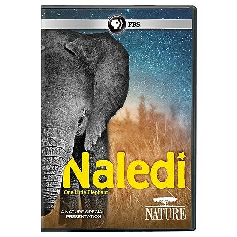 NATURE: Naledi: One Little Elephant DVD