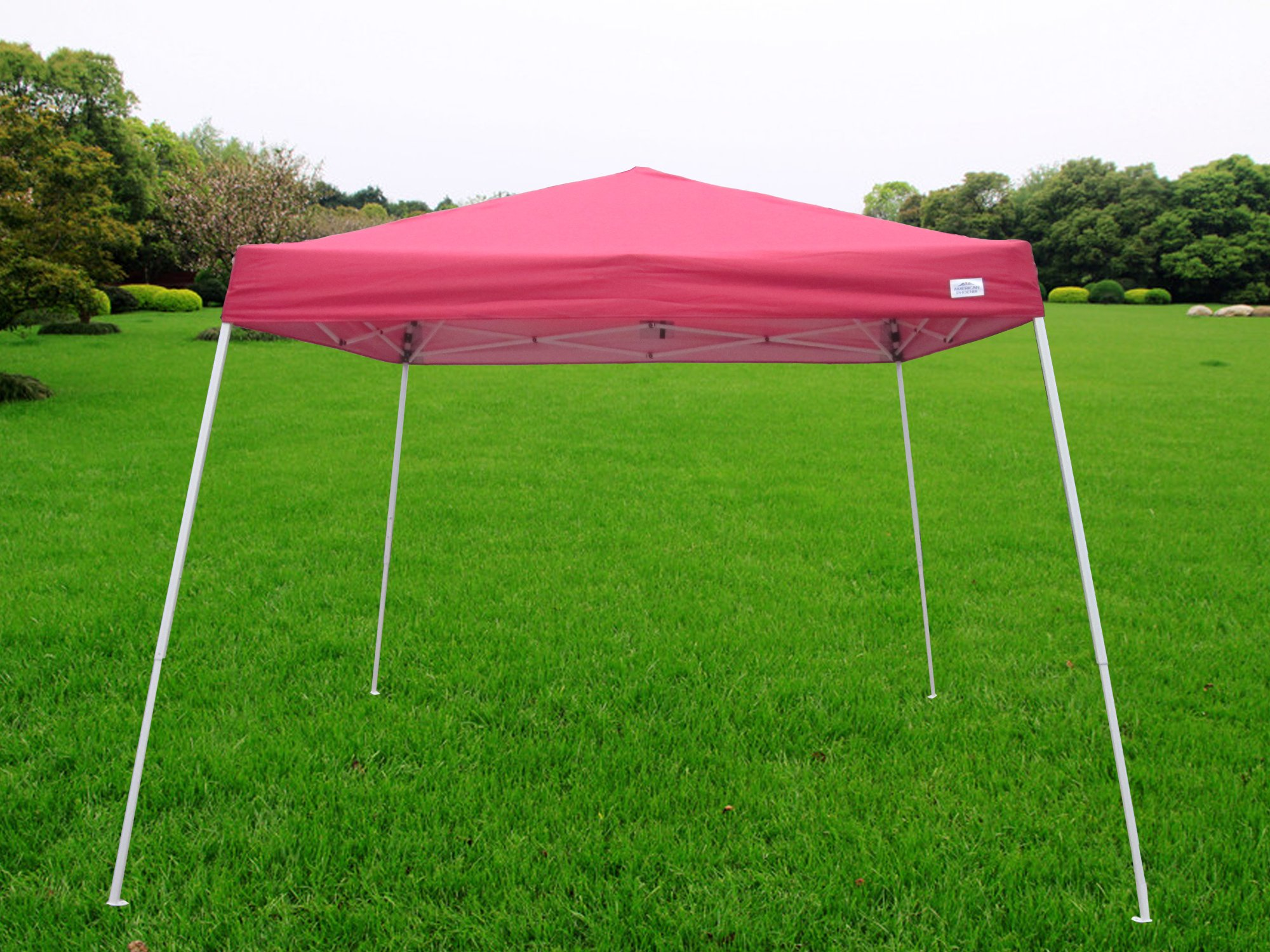 American Phoenix 10x10 Multi Color [Slant Leg][White Frame ] Light Weight Portable Event Canopy Tent. Shade Commercial Party Canopy tent Easy Pop Up (Red, 10x10)