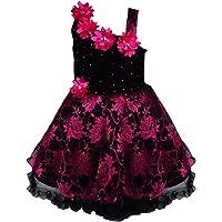 Wish Karo Baby Girls Frock Dress (Pink/red/Gold/Silver-Net)