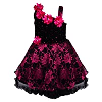 Wish Karo Baby Girl's Net Frock