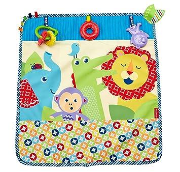 Fisher-Price Mantita activity de paseo, manta de actividades bebé (Mattel DYW52: Amazon.es: Juguetes y juegos