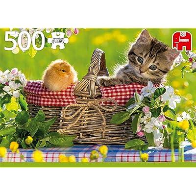 Premium Collection Ready for a Picnic 500 pcs Puzzle - Rompecabezas (Puzzle Rompecabezas, Animales, Niños y Adultos, Gato, Niño/niña, 12 año(s)): Juguetes y juegos