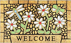 CHICHIC Door Mat Welcome Mat 17x 30 Inch Front Door Mat Outdoor for Home Entrance Outdoor Mat for Outside Entry Way Doormat Entry Rugs, Heavy Duty Non Slip Rubber Back Low Profile, Dragonfly