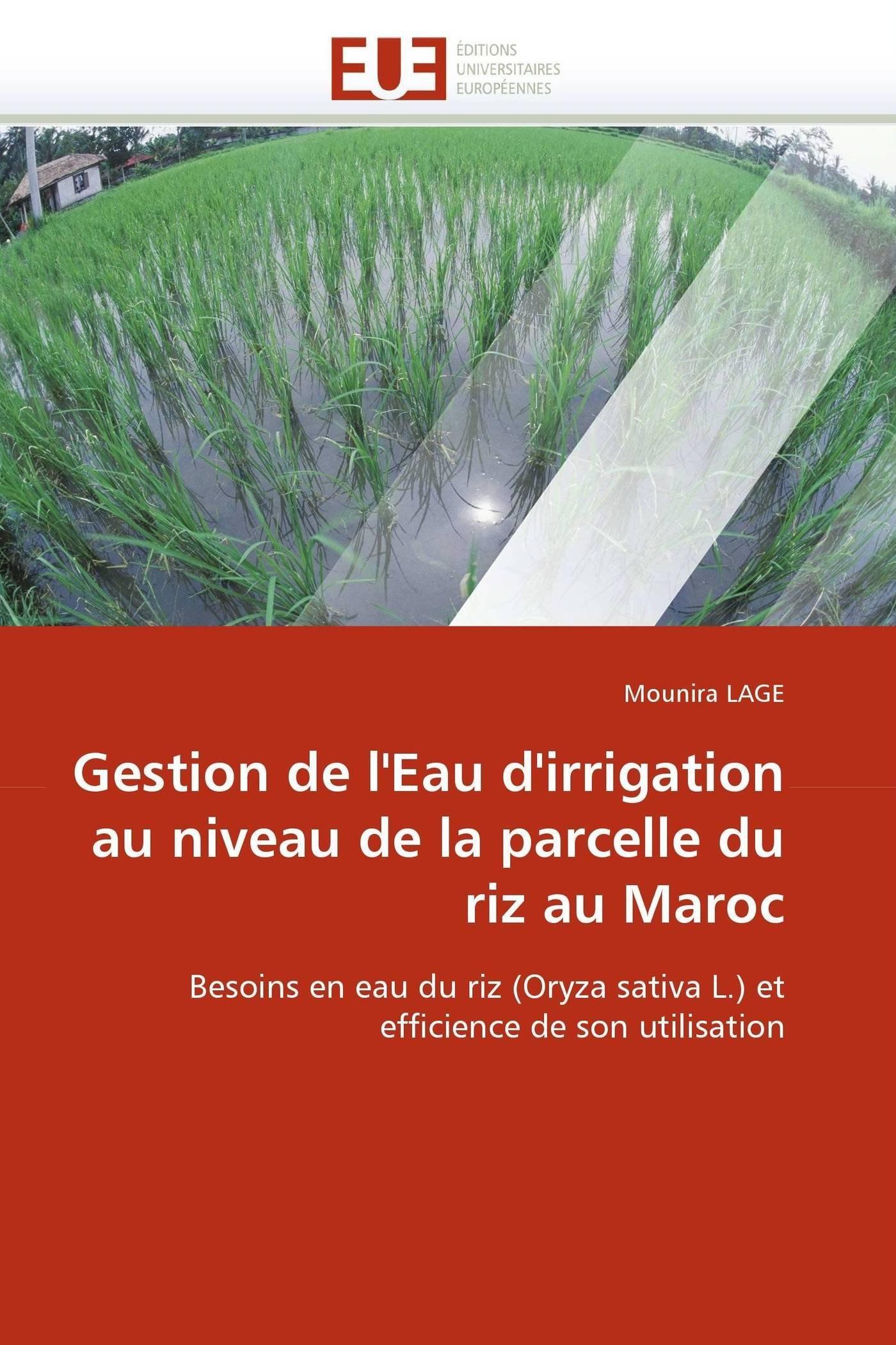 Gestion de l'Eau d'irrigation au niveau de la parcelle du riz au Maroc: Besoins en eau du riz (Oryza sativa L.) et efficience de son utilisation (Omn.Univ.Europ.) (French Edition) ebook