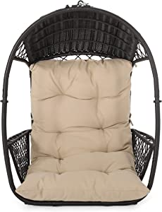 Christopher Knight Home 313355 Sidney Outdoor/Indoor Wicker Hanging Chair with 8 Foot Chain (NO Stand), Brown and Tan