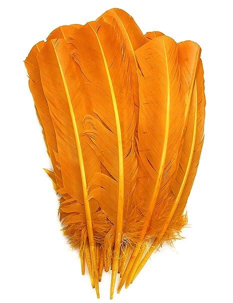4b8beb6c61f958 ERGEOB 20 stück Truthahnfedern basteln Federn Bogen Federn 20-30cm (11  Orange)