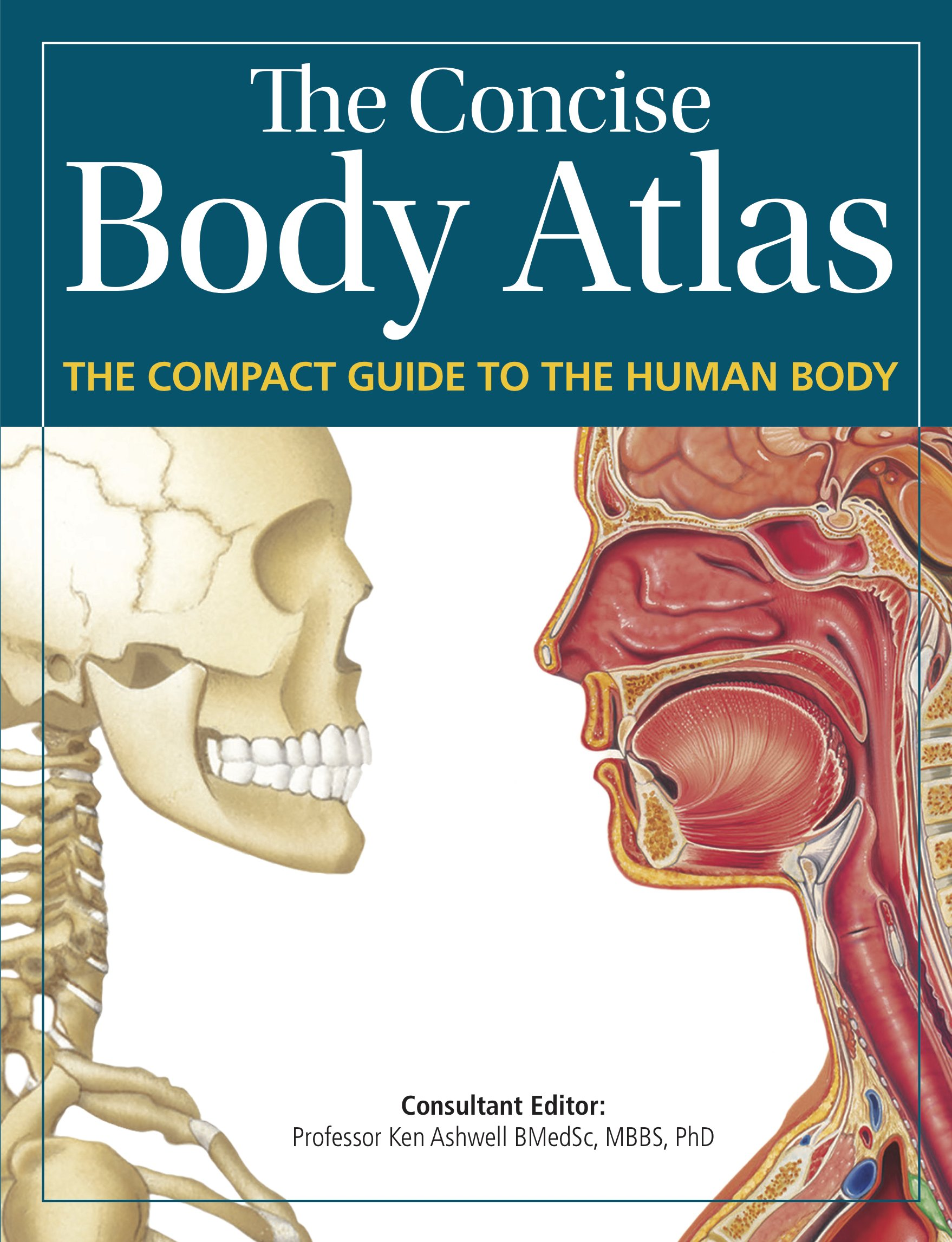 Concise Body Atlas The Compact Guide To The Human Body Amazon