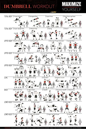 3ec8c61dc5b Huge 20 quot x30 quot  Dumbbell Workout Exercise Poster-Full Body Fitness  Routine Home Gym