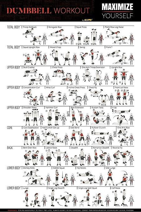 """Gran 20 """"x30"""" mancuerna entrenamiento ejercicio poster-full – Rutina gimnasio en"""