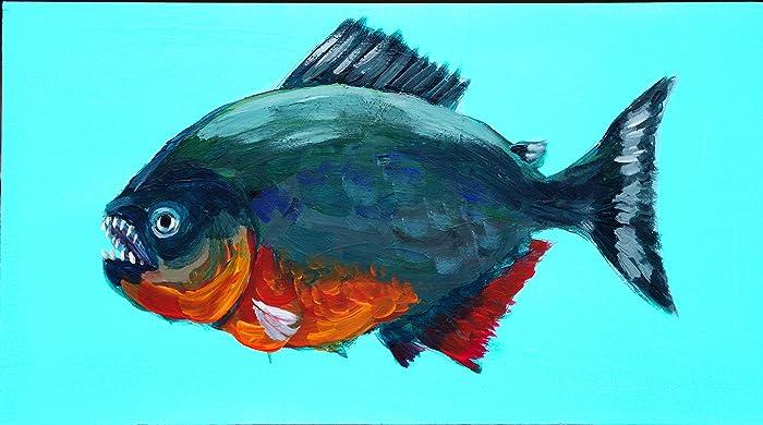 Amazon com: Red-bellied Piranha: Will Eskridge: Fine Art