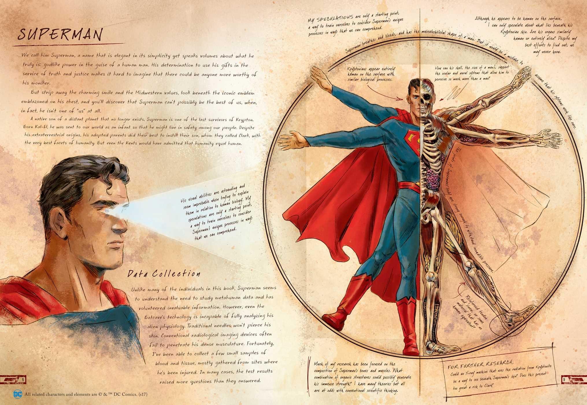 Dc Comics Anatomy Of A Metahuman Amazon Sd Perry Matthew K