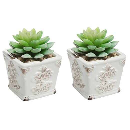 Mini Ceramic Planter Pots <br />Set of 2&#8243; width=&#8221;522&#8243; style=&#8221;max-width:none;border:0;height:auto;width:100%&#8221;></span><span style=