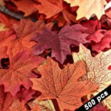 Trooer 500 Pacakage Maple Leaf Assorted Mixed Fall Colored Silk for Weddings Decorations or Christmas Party