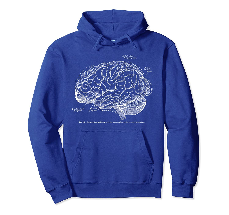 Vintage Brain Human Anatomy Hoodie-Samdetee