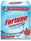Fortune Dishwasher Salt - 1 kg