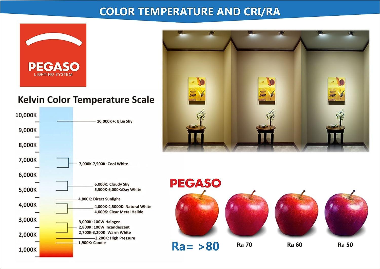 Pegaso Lot 5/panneaux carr/és LED W lm Spot encastrable Lumi/ère froide 6/000/K Avec rabats /à ressort