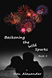 Beckoning the Wild Sparks