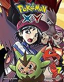Pokémon X•Y, Vol. 7