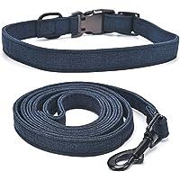 Collar y correa grabada para perro, collar de mascota con hebilla semimetálica, collar ligero para cachorros, adecuado…