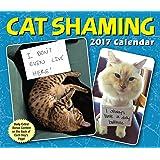 Cat Shaming 2017 Calendar