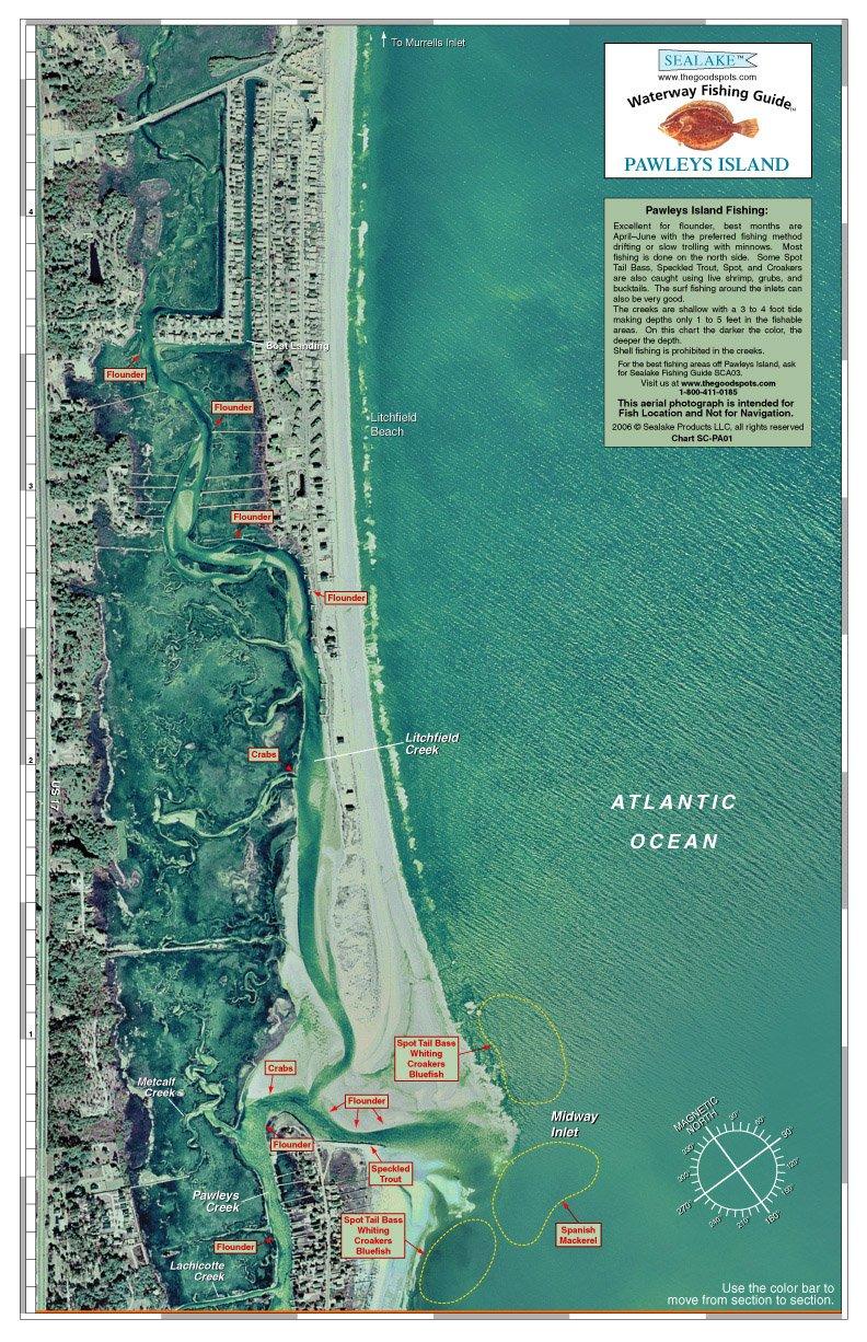 Amazon South Carolina Pawleys Island Waterway Fishing Guide