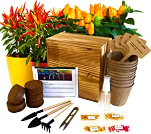 Hand-Mart 4 Pepper Seeds with Planter Box Starter Kit Indoors, Red/Green Spicy Yellow Round Green Pepper, Including Soil, Pots, 3 Garden-Tool, Pruner, Sprayer, Plant Labels, DIY Craft for Kids Adults