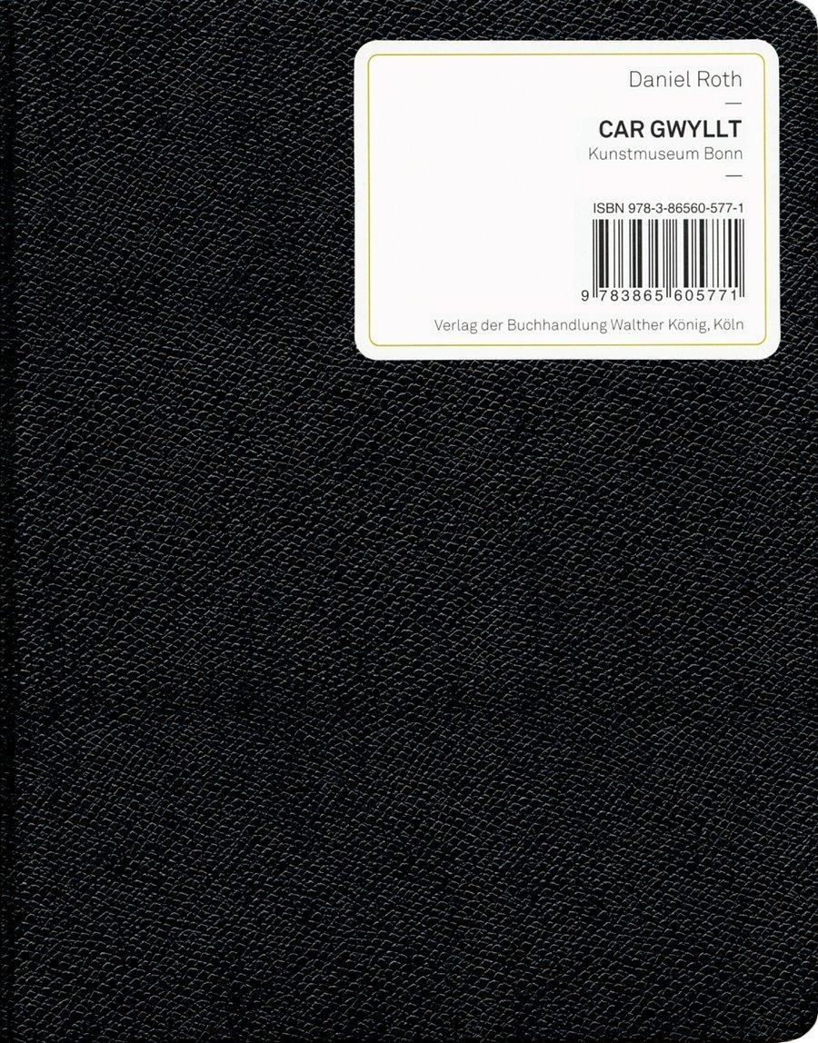 Daniel Roth: Car Gwyllt PDF