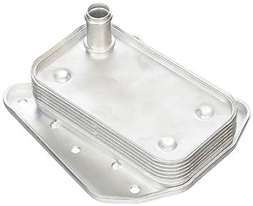 Vemo V30-60-1273 Radiador de aceite, aceite motor: Amazon.es: Coche y moto