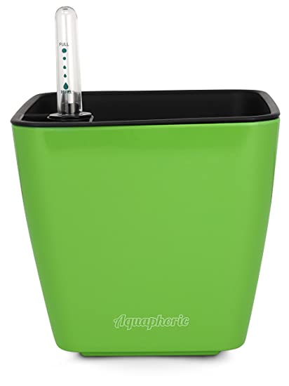 Aquaphoric Self Watering Planter (5u201d) + Fiber Soil U003d Foolproof Indoor Home  Garden