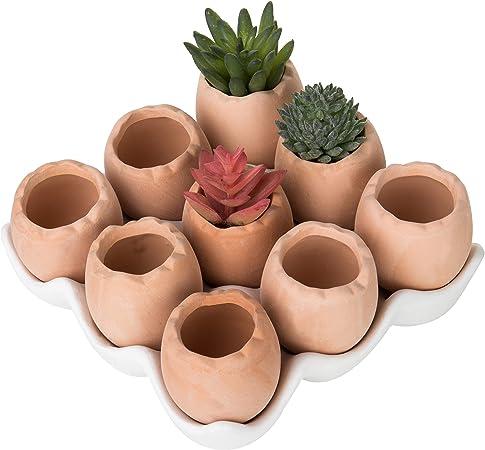 MyGift Adorable Set of 7 Brown Eggs Design Ceramic Succulent Planters/Mini  Decorative Pots w/Tray