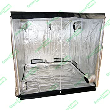 Green L& Premium 400 x 200 x 200cm 600D Mylar Indoor Grow Tent Box Hydroponics Dark  sc 1 st  Amazon UK & Green Lamp Premium 400 x 200 x 200cm 600D Mylar Indoor Grow Tent ...
