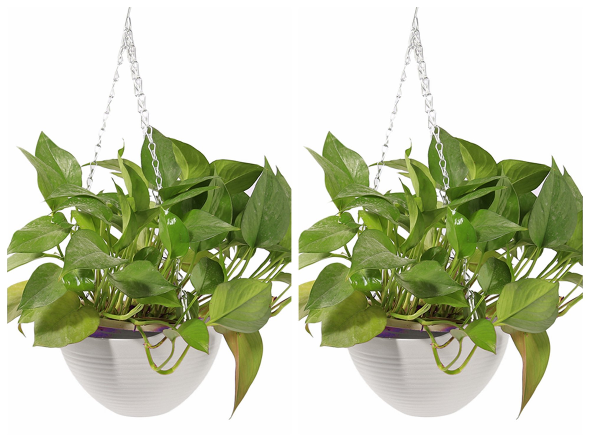 Garden Pots 2pcs, Petforu Hanging Flower Basket EMPTY Flowerpot Plant Hooks Hangers - WHITE by Petforu