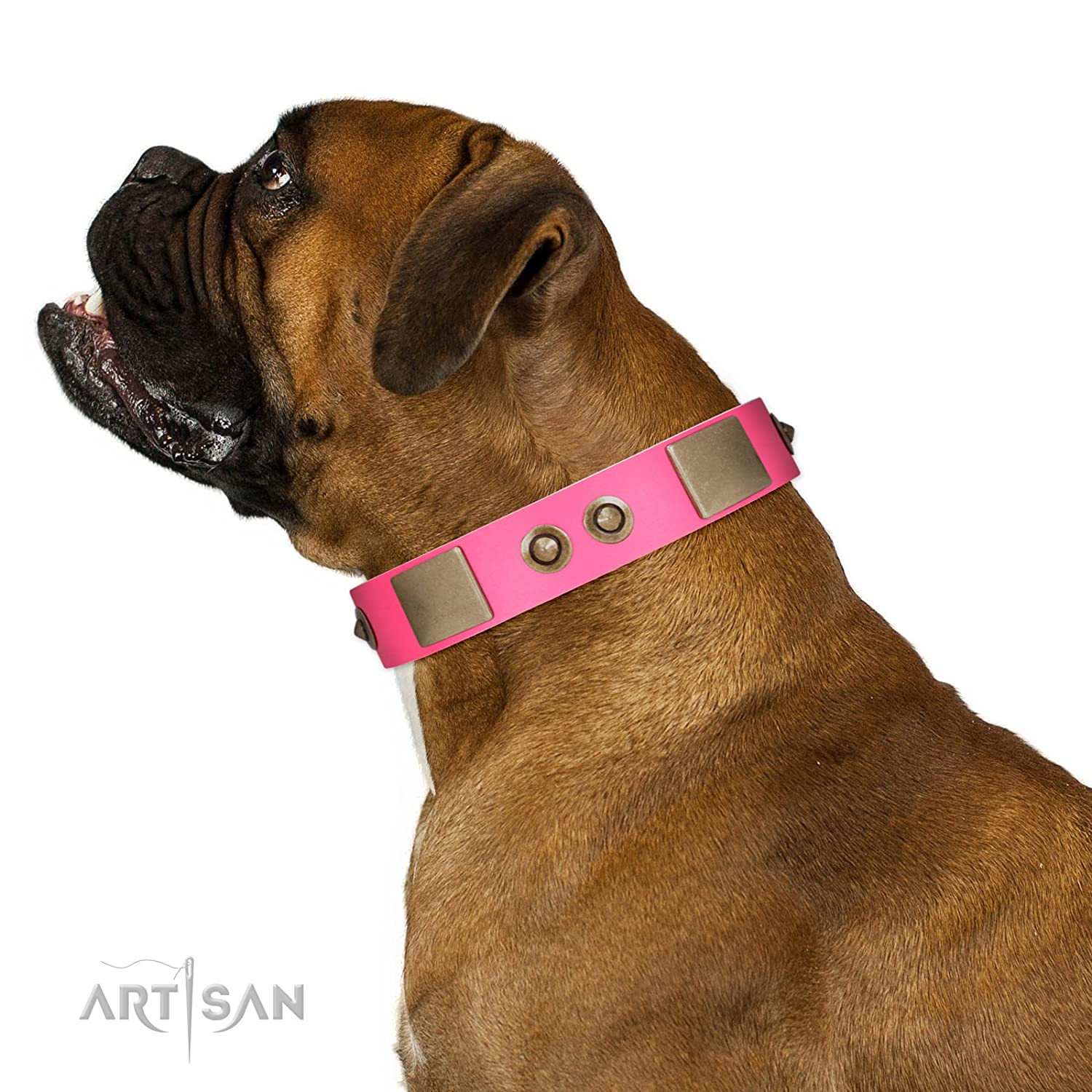 Fits for 25 inch (63cm) dog's neck size FDT Artisan Pink Splash Soft Leather Dog Collar with Bronze-Like Plates and Medallions 1 1 2 inch (40 mm) Wide